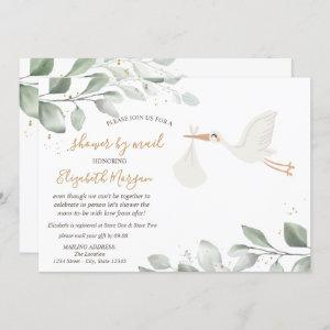 Stork Delivery Baby Shower By Mail Invitation